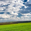 Stock Photo: Beautiful green field and clouds