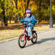 Boy riding on bicycle in park — Stock Photo #26463503