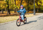 Boy riding on bicycle in park — Stock Photo