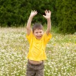 Boy jumping on meadow — Stock Photo