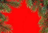Red christmas frame from fir branches — Stock Photo