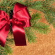 Big red bow on fir tree branches — Stock Photo