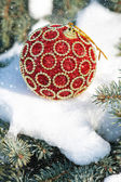 Red christmas ball on winter tree with snowfall — Stock Photo