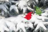 Christmas red tree toys in snowfall on fir tree — Stock Photo