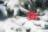 Red snowflake toy in snowfall on fir tree — Stock Photo