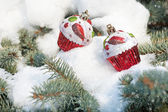 Christmas toy cakes on winter tree with snowfall — Stock Photo