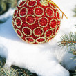 Red christmas ball on winter tree with snow — Foto Stock