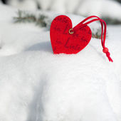 Red heart toy in snow on fir tree — Stock Photo