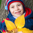 Smiling boy portrait on autumn park — Stock Photo