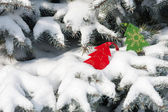 Christmas red tree toys in snow on fir tree — Stock Photo