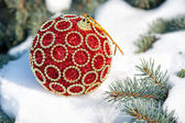 Red christmas ball on winter tree with snow — Stock Photo