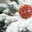 Red christmas ball on fir tree with snow — Stock Photo