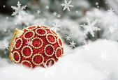 Red christmas ball on fir tree with snow — Zdjęcie stockowe