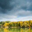 Autumn forest, river and moody sky — Stock Photo #34234417
