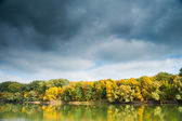Autumn forest, river and moody sky — Stock Photo