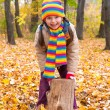Girl in autumn park — Stock Photo #34406511