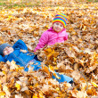 Childs in autumn park — Stock Photo #34417367