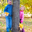 Childs in autumn park — Stock Photo #34423979