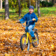 Boy rides a bicycle in park — Stock Photo #34912421