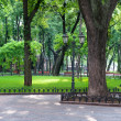 Stock Photo: Summer day in city park