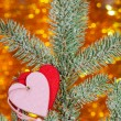 Two hearts on christmas fir tree branch — Stock Photo #38401717