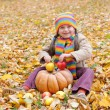 Girl in autumn park with pumpkin and apples — 图库照片