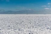 Dondurulmuş deniz ve gemi ufukta — Stok fotoğraf