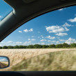 View from car window on wheat field — Stock Photo #44293039