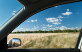 View from car window on wheat field — Stock Photo