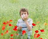 Allergy boy with handkerchief on red flower field — Stock Photo
