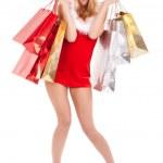 Woman christmas shopping — Stock Photo #11986535