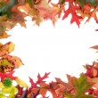 Fall leaves frame 1 — Stock Photo