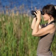 Watching wildlife — Stockfoto