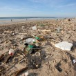 Polluted beach — Stock Photo