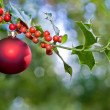 Christmas ball and holly — Stock Photo