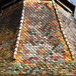 Colorful tiled roof — Stockfoto