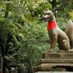 Inari Fox statue — Stock Photo