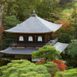 Ginkakuji japanese temple — Stock Photo