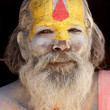 Sadhu portrait — Stock Photo
