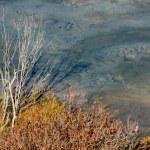 Nepal autumn landscape — Stock Photo