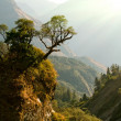 Enchanted Nepal landscape — Stock Photo