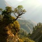 Enchanted Nepal landscape — Stock Photo