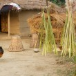 Nepalese traditional farm in chitwan, nepal — Stockfoto