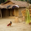 Nepalese farm — Stock Photo