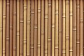 Plastic bamboo fence — Stock Photo