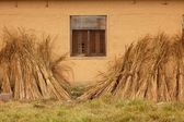 Straw on mud wall — Stock Photo