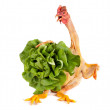 Chicken holding salad — Stock Photo
