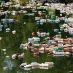 Beautiful landscape ruined by trash pollution, Bicaz lake, Romania — Stock Photo