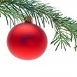 Bauble on christmas tree — Stock Photo