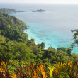 Jungle and sea landscape - Stock Photo